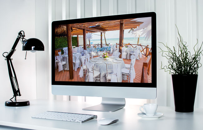 sviluppo pagina web per blue parrot weddings